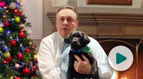 Glenn Hoagland sits in front of a fireplace and Christmas tree.  Sitting on his lap is Spenser, a black Labrador retriever puppy.