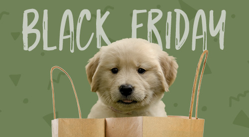 "Headline: ""Black Friday.""  A golden retriever puppy pokes its head out from the top of a paper shopping bag."