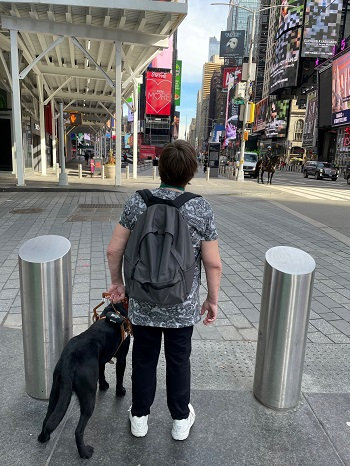 A graduate is photographed from behind. Over her shoulder you can see Times Square with a mounted police officer, traffic and pedestrians beneath large and colorful electronic billboards. The black Lab stands beside her handler at a crosswalk, the team waiting for the opportunity to proceed.