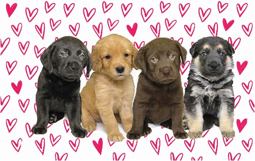 A black Lab,  golden retriever,  chocolate Lab, and German shepherd puppy are seated together and surrounded by a wall of hearts.