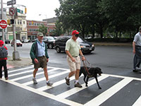 A Seeing Eye instructor is walking under blindfold while a black Lab guides him across a street. Another instructor is following behind, observing the dog's work.