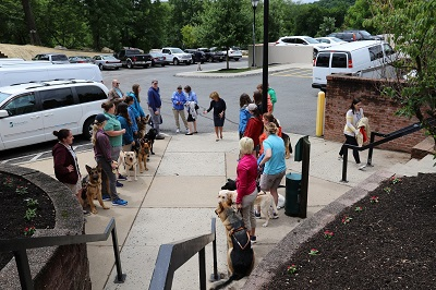 Seeing Eye dogs at building entrance