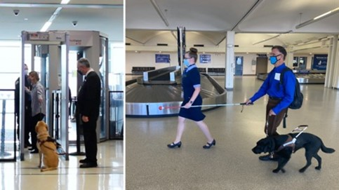 In the first image, a guide dog handler and her guide dog are seen as they negotiate a metal detector in the security area. In the second image, an airline staff member holds one end of a white cane while a guide dog handler holds the other end in order to create social distance. The handler's dog walks beside him on leash.